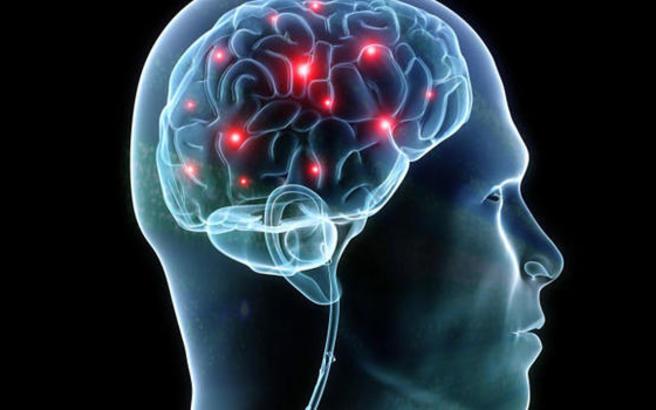 brain.medium