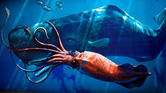 giant-squid